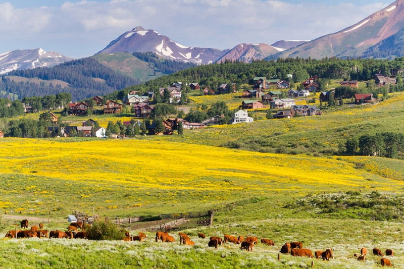 Gunnison County in the state of Colorado