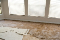 Tips on How to Restore Flooded Carpet Flooring | Central Colorado