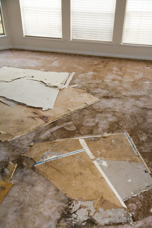 Indoor carpet flooring damaged by water and storm