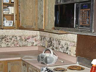 Mold infested kitchen walls and cabinets.